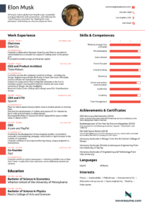 Elon Musk Curriculum una pagina